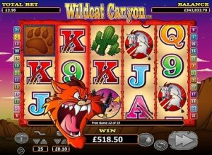 Wildcat Canyon NextGen Gaming free spin